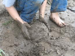 Mud-pie1